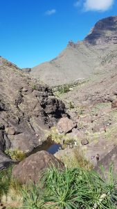 Gran Canaria – Charco Azul